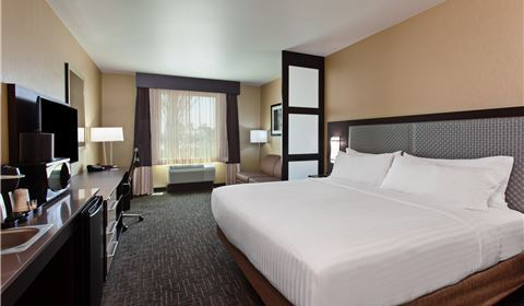 Wonderland King Suite at Holiday Inn Express & Suites - Anaheim Resort Area